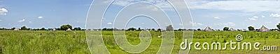 180 degree panorama of south sudan