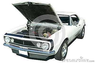 1967 Chevrolet Camaro Isolated