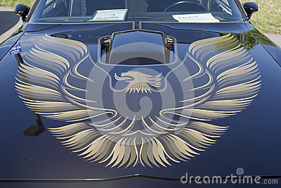 1980 Pontiac Firebird Trans Am Hood Editorial Stock Image