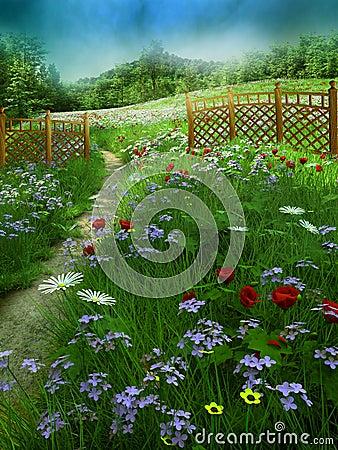 2个草甸夏天
