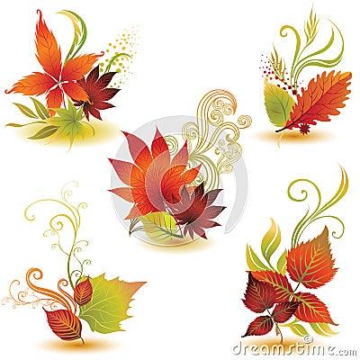 2片秋天五颜六色的叶子被设置的向量