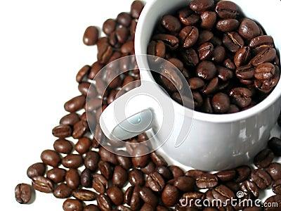 2 σειρές καφέ