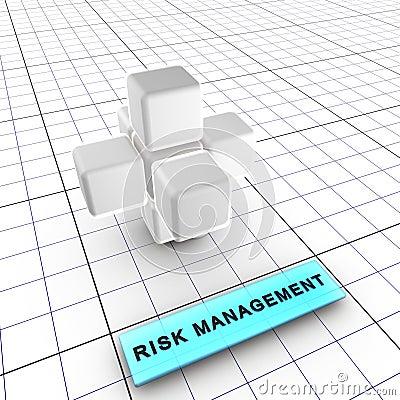 2 6个管理风险