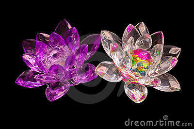 2 Crystal flowers on a black