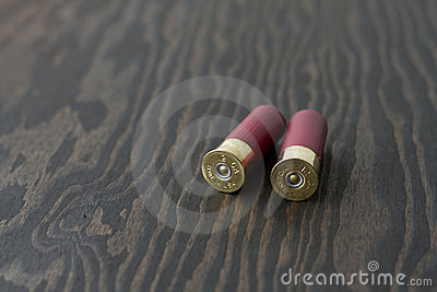 2 Shotgun Shells