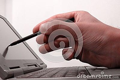 2 tft ekranów komputerowych