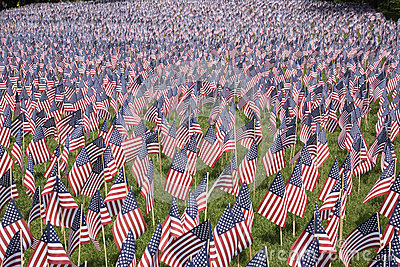 20000 flags