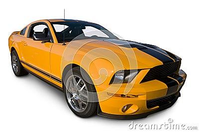 2008 American Sports Car
