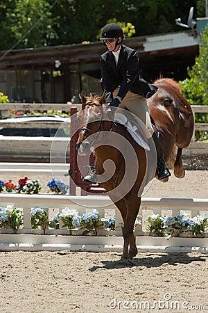 2010 June 06, Open Horse Show, Portola Valley, CA Editorial Image