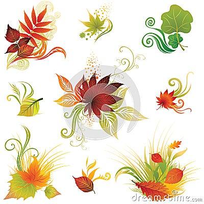 3片秋天五颜六色的叶子被设置的向量