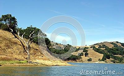 3 λόφοι Καλιφόρνιας