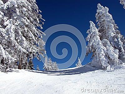 3滑雪倾斜