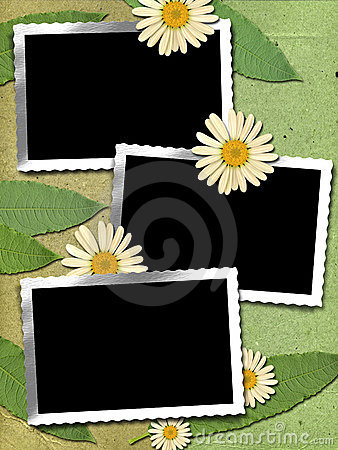 3 Frame with chamomile