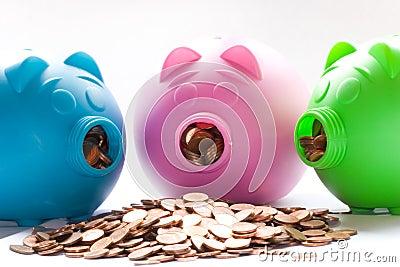 3 piggys
