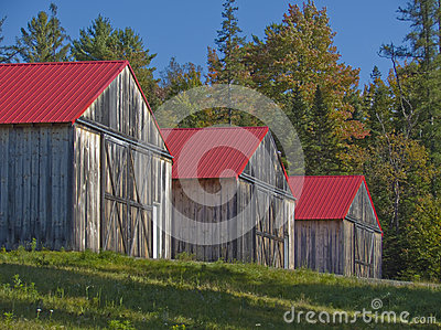 3 Red Roofed Wooden Barns