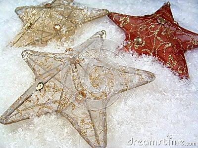 3 Stars in Snow