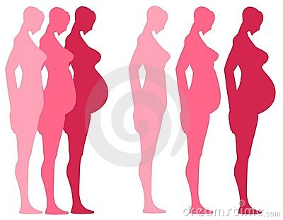 3 trimesters of pregnancy royalty free stock photos image 4165168. Black Bedroom Furniture Sets. Home Design Ideas