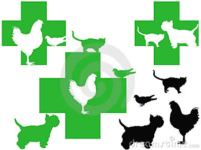 3 veterinary cross logos with cute animals