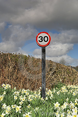 30 mph sign in Daffodils