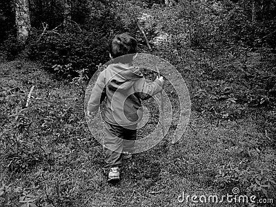 男孩小的森林