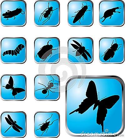37个按钮昆虫被设置的x