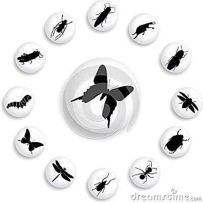 37 b guzików insektów ustawiających