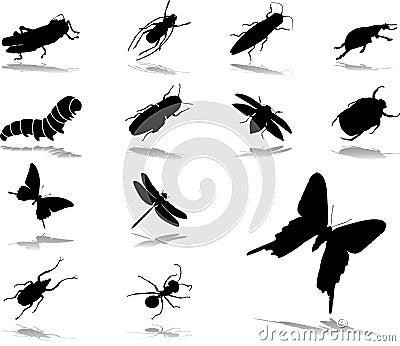 37 owadów ikon ustalonych