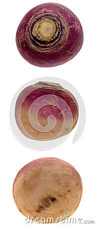 食物三重奏白萝卜