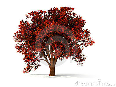 3d autumnal tree