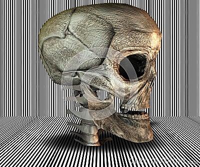 3D big realistic skull