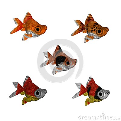 goldfish cartoon pictures. 3D CARTOON GOLDFISH SET 1
