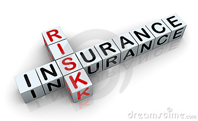 3d crossword of  insurance risk