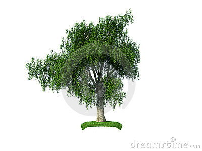 3d crying iva tree