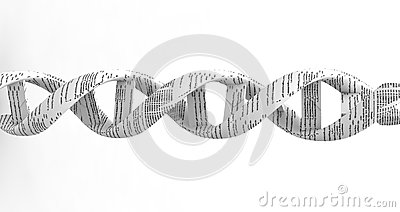 3d dna spiral