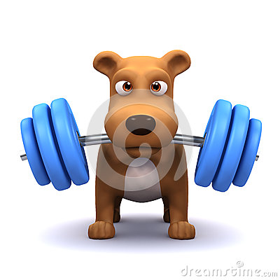3d Dog powerlifter