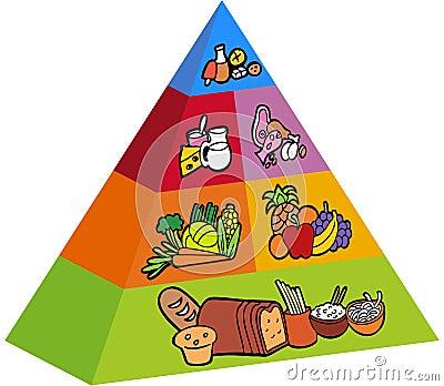 3d Food Pyramid Stock Photos Image 11106153