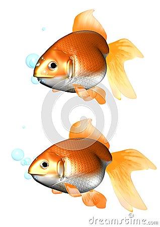 3D gold fish