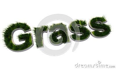3D grass text