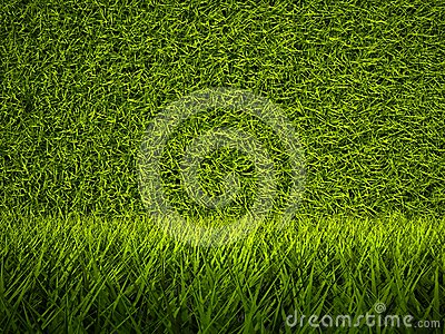 3d green grass texture, background