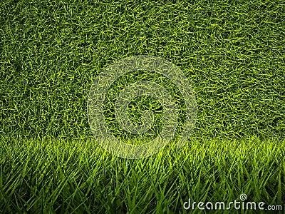 3d green grass texture, background