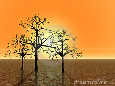 3d landscape with tree. Sunset