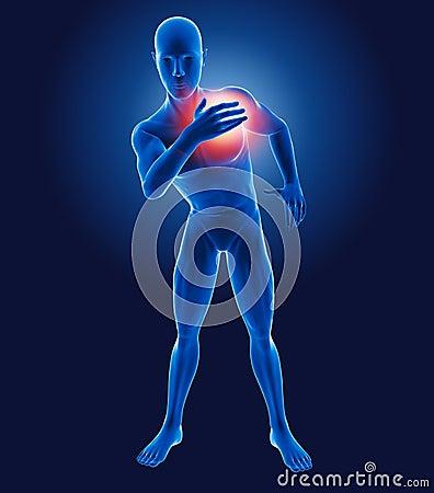 3D medical man