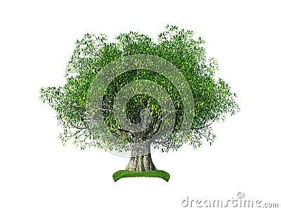 3d olive tree Stock Photo