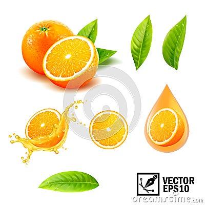 Free 3d Realistic Vector Set Of Elements Whole Orange, Sliced Orange, Splash Orange Juice, Drop Orange Oil, Leaves Royalty Free Stock Photos - 109204098