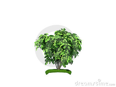3d render of the small bush