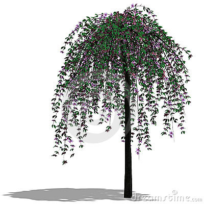 3D Render of a Tree