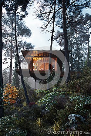 Free 3D Rendering Wooden House Treehouse In Woods Twilight Royalty Free Stock Images - 109379729