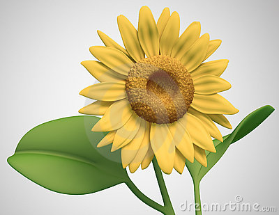 3D sunflower