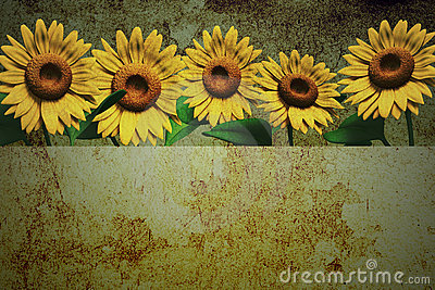 3D sunflower and background