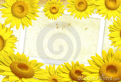 3D sunflower frame